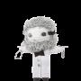 PROF. DR. DR. ATOM